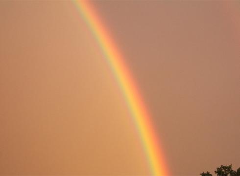 Schlange und Regenbogen
